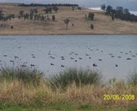 Lake Liddell Recreation Area - Wagga Wagga Accommodation