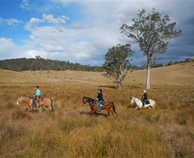 Chapman Valley Horse Riding - Wagga Wagga Accommodation