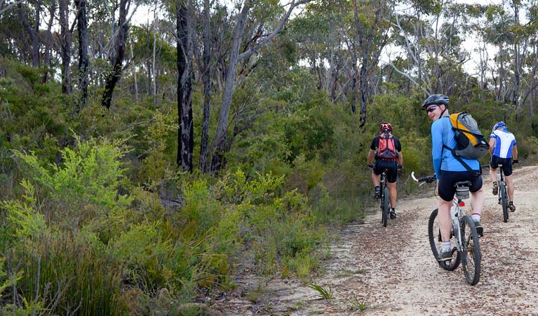 McMahon's Point ride - Wentworth Falls - Wagga Wagga Accommodation
