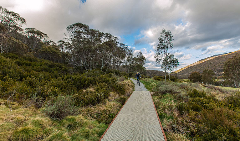 Thredbo Valley track