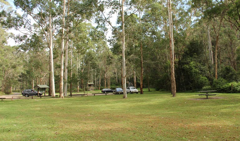 Mill Creek picnic area - Wagga Wagga Accommodation