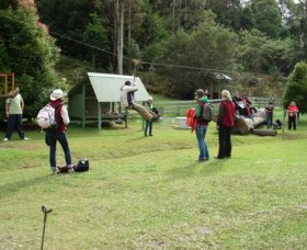 Forest of Tranquillity - Australian Rainforest Sanctuary - Wagga Wagga Accommodation