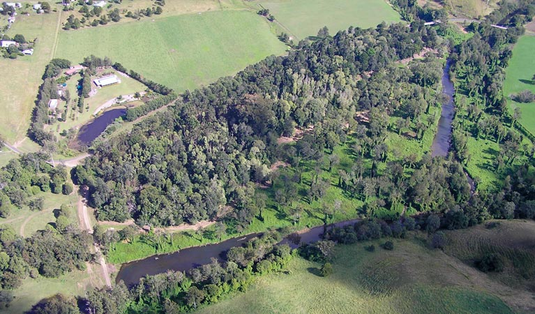 Moore Park Nature Reserve - Wagga Wagga Accommodation
