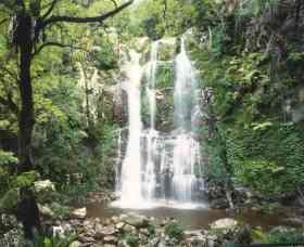 Budderoo National Park - The Falls Walk - Wagga Wagga Accommodation