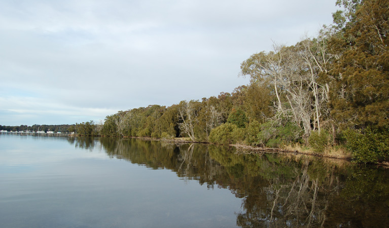 Lake Macquarie State Conservation Area - Wagga Wagga Accommodation
