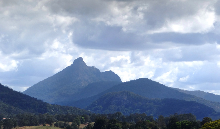 Wollumbin National Park - Wagga Wagga Accommodation