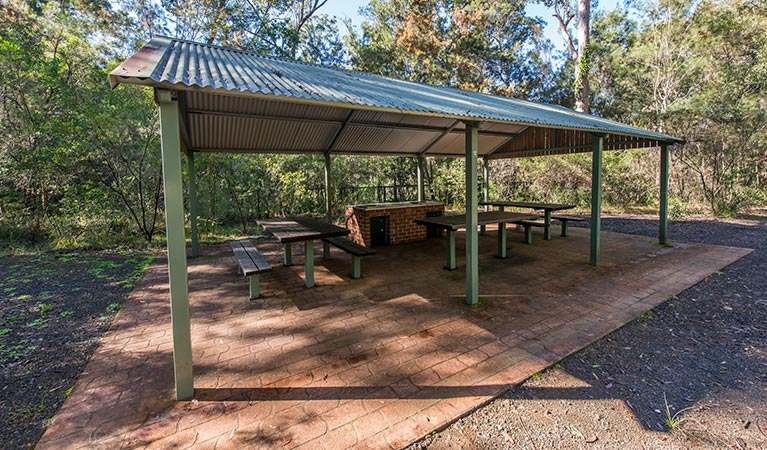 Brimbin picnic area - Wagga Wagga Accommodation
