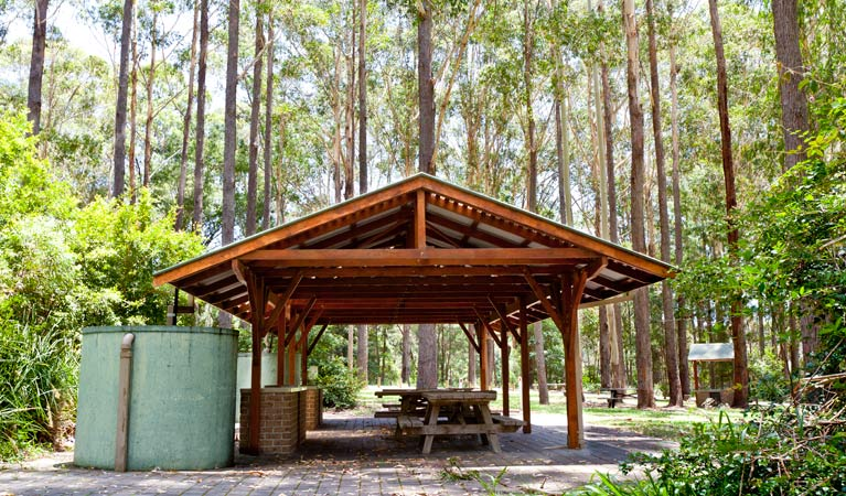 Bongil picnic area - Wagga Wagga Accommodation