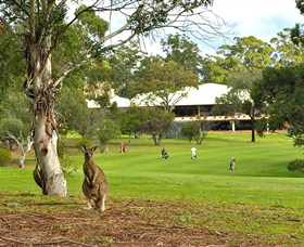 Pambula Merimbula Golf Club - Wagga Wagga Accommodation