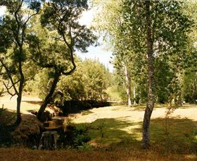Oldina Picnic Area - Wagga Wagga Accommodation