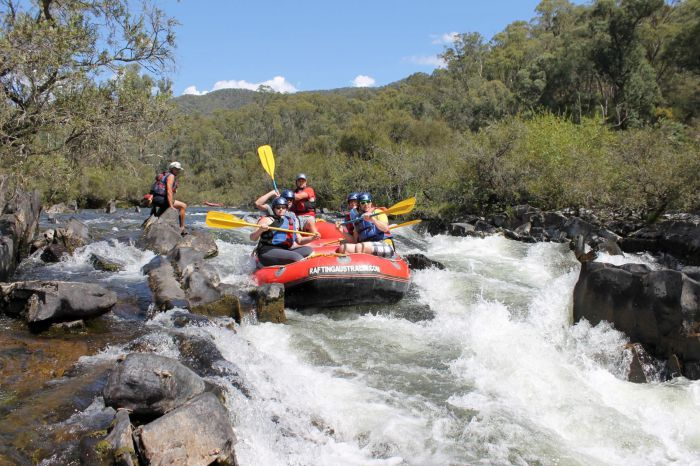 Rafting Australia - Wagga Wagga Accommodation