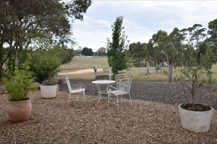 Cygnet Park Country Retreat - Wagga Wagga Accommodation