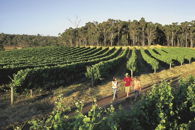 Margaret River Caves Wine and Cape Leeuwin Lighthouse Tour from Perth - Wagga Wagga Accommodation