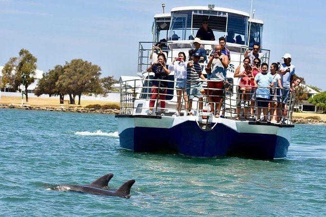 Mandurah Dolphin and Scenic Canal Cruise - Wagga Wagga Accommodation