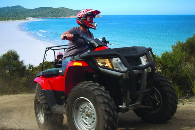 Half-Day Guided ATV Exploration Tour from Coles Bay - Wagga Wagga Accommodation