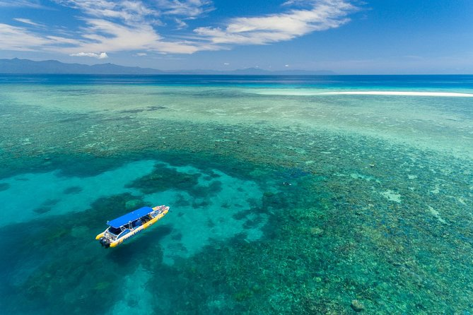 Ocean Safari Great Barrier Reef Experience in Cape Tribulation - Wagga Wagga Accommodation