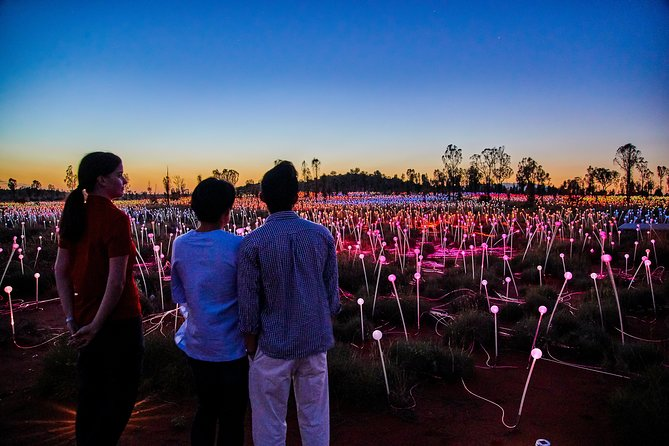 Uluru Field of Light Sunrise Tour - Wagga Wagga Accommodation