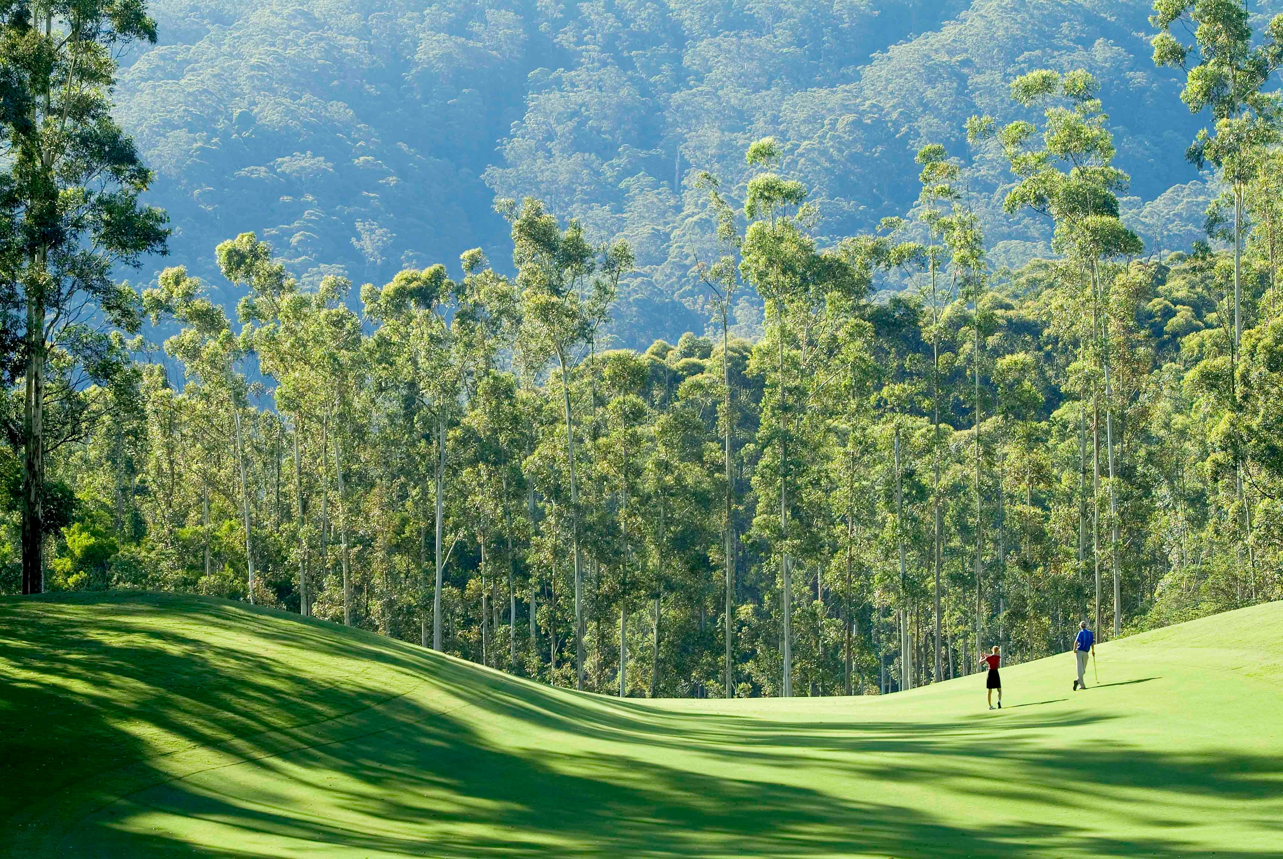 Bonville Golf Resort - Wagga Wagga Accommodation