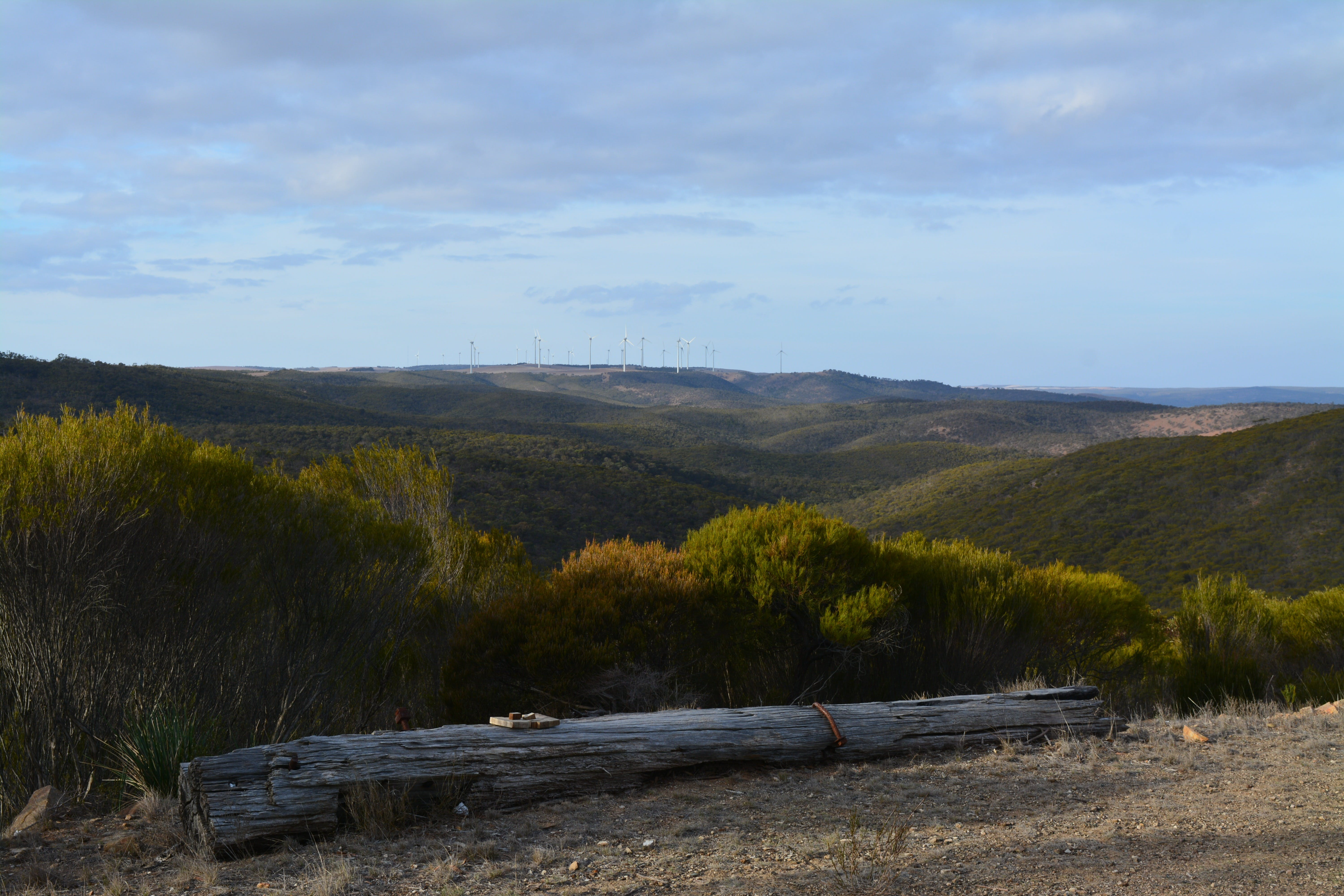 Cleve Hills Scenic Drive  Lookout - Wagga Wagga Accommodation