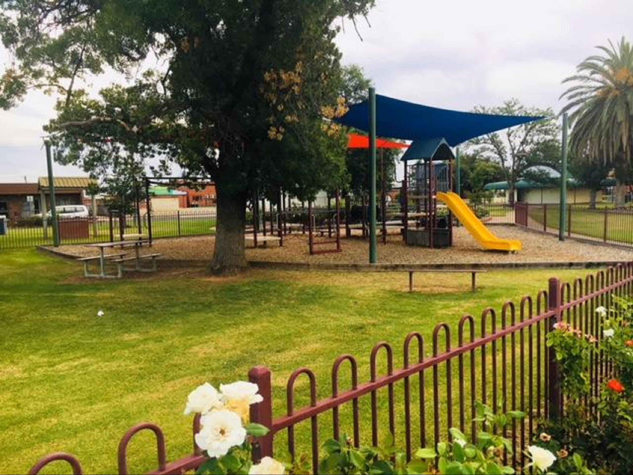 Cobram Mivo Park and Playground - Wagga Wagga Accommodation