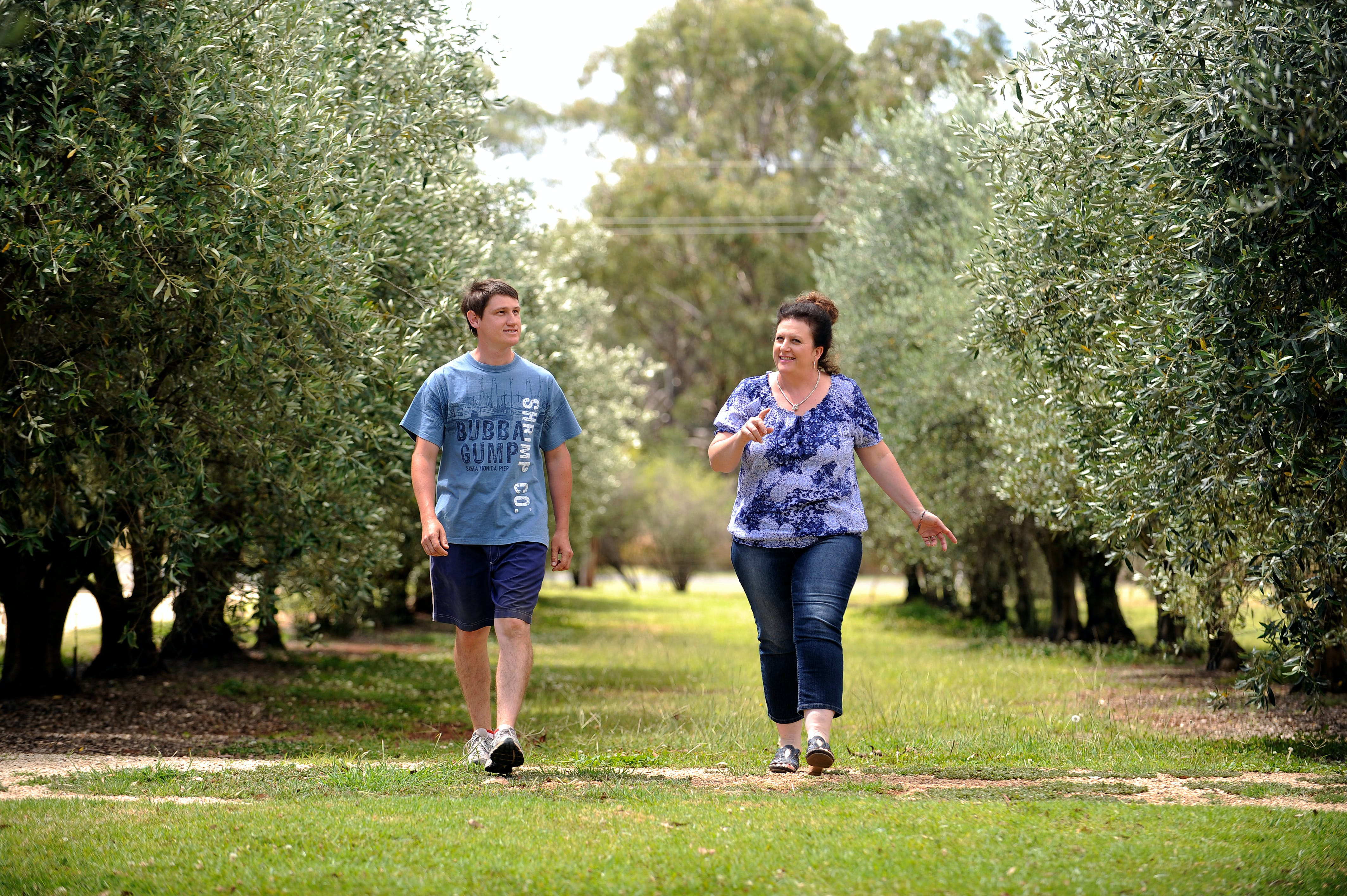 Olives of Beaulieu - Wagga Wagga Accommodation