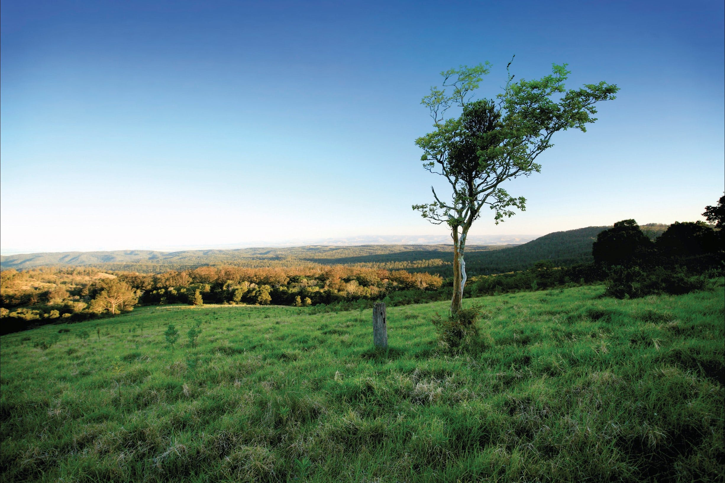 Ravensbourne National Park - Wagga Wagga Accommodation