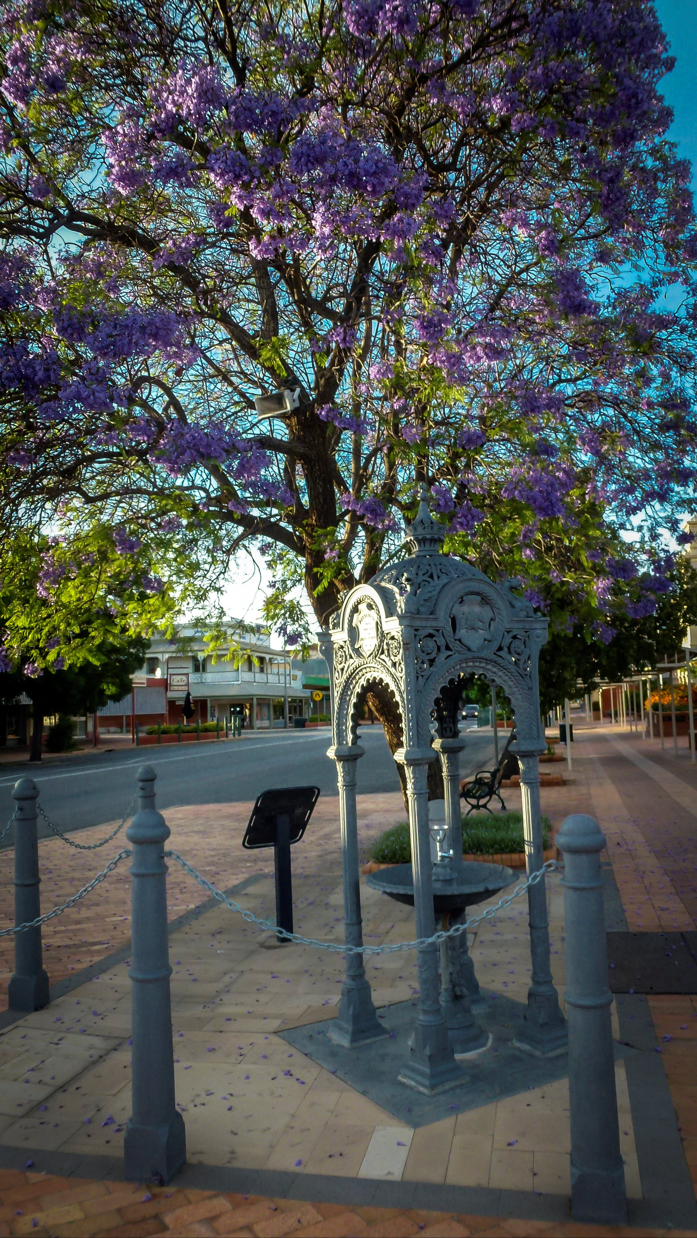 Witcombe Fountain - Wagga Wagga Accommodation