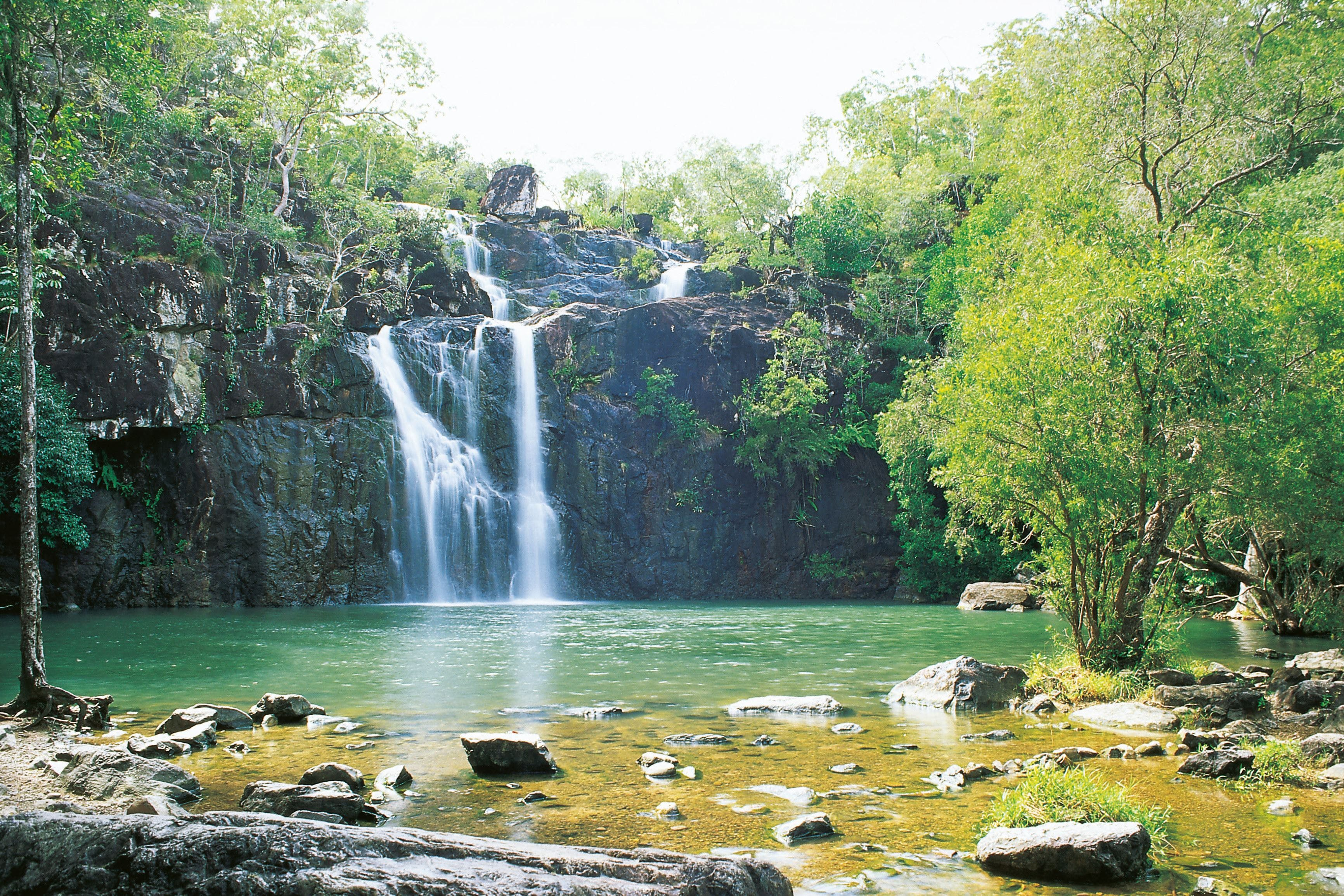 Airlie Beach to Cedar Creek Falls - Wagga Wagga Accommodation