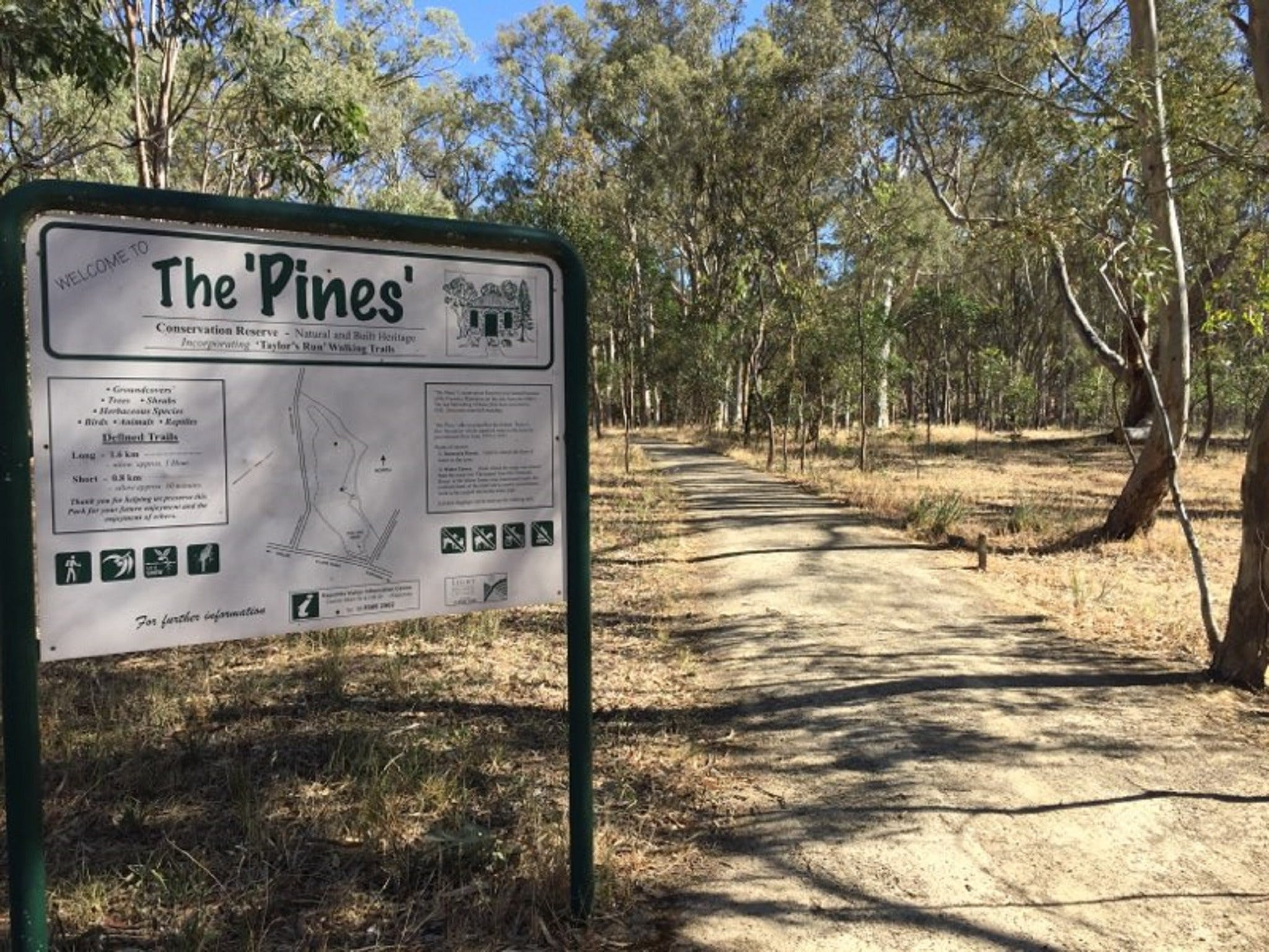 The Pines Conservation Reserve - Wagga Wagga Accommodation