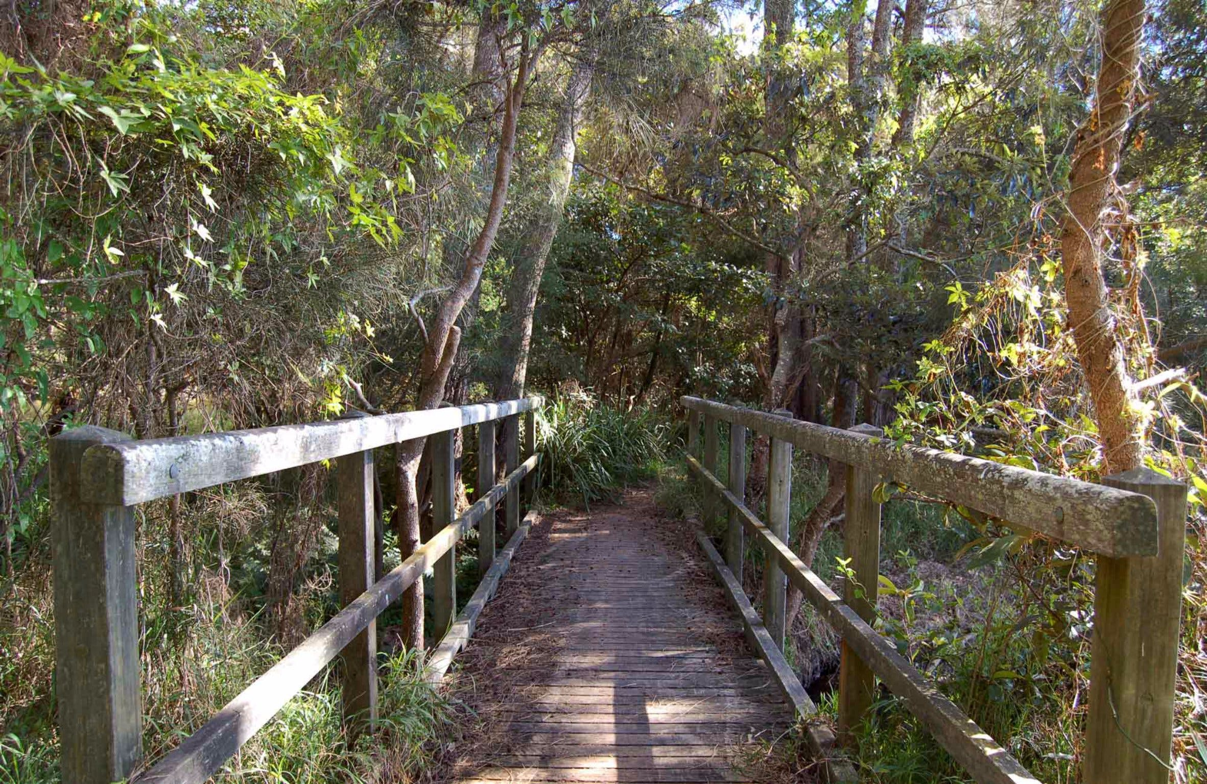 Awaba Bay Foreshore Walk - Wagga Wagga Accommodation