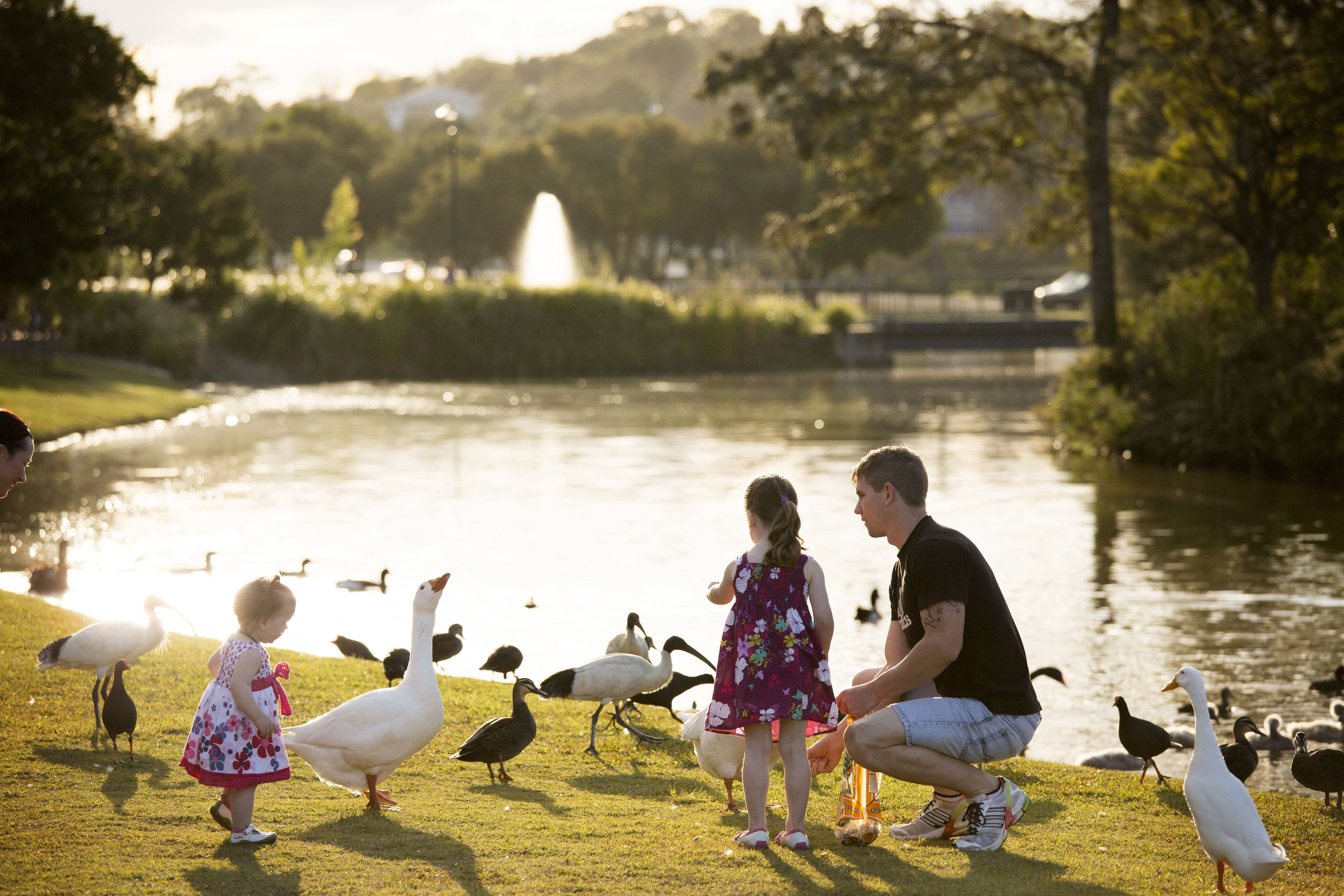 Lake Alford Recreational Park - Wagga Wagga Accommodation