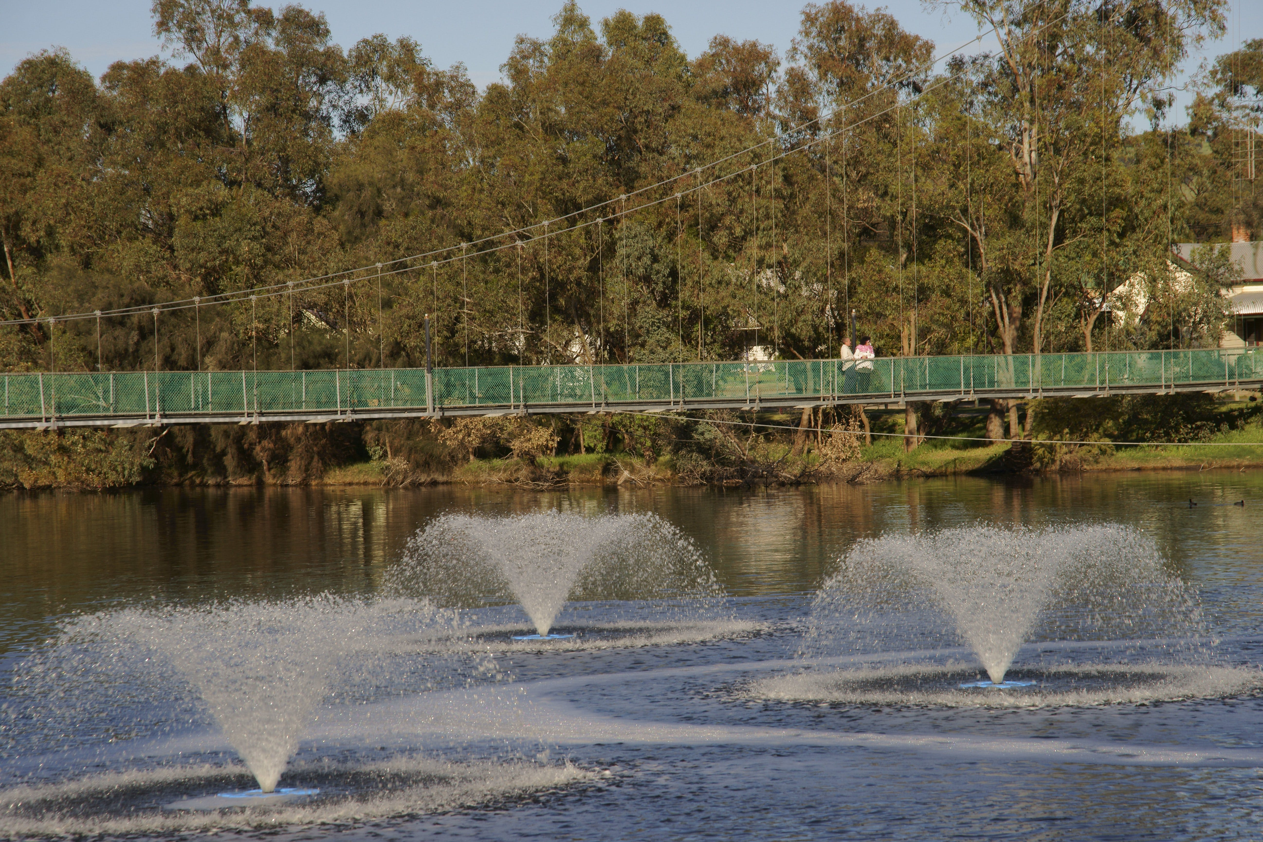 Suspension Bridge - Wagga Wagga Accommodation