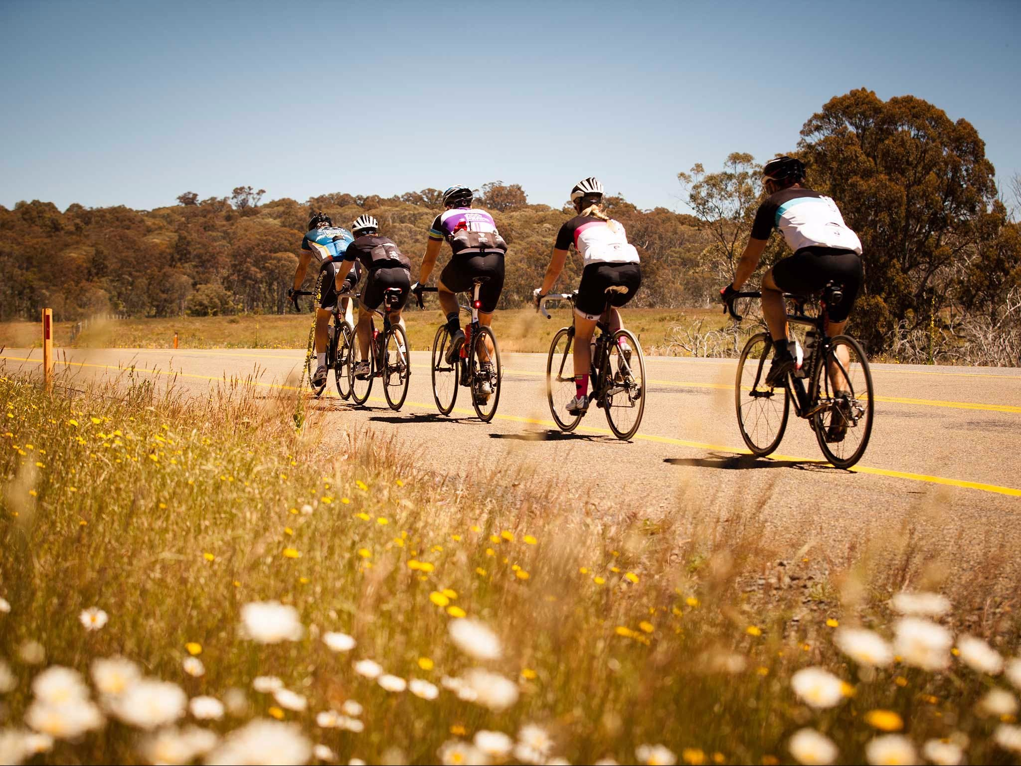 7 Peaks Ride - Dinner Plain - Wagga Wagga Accommodation