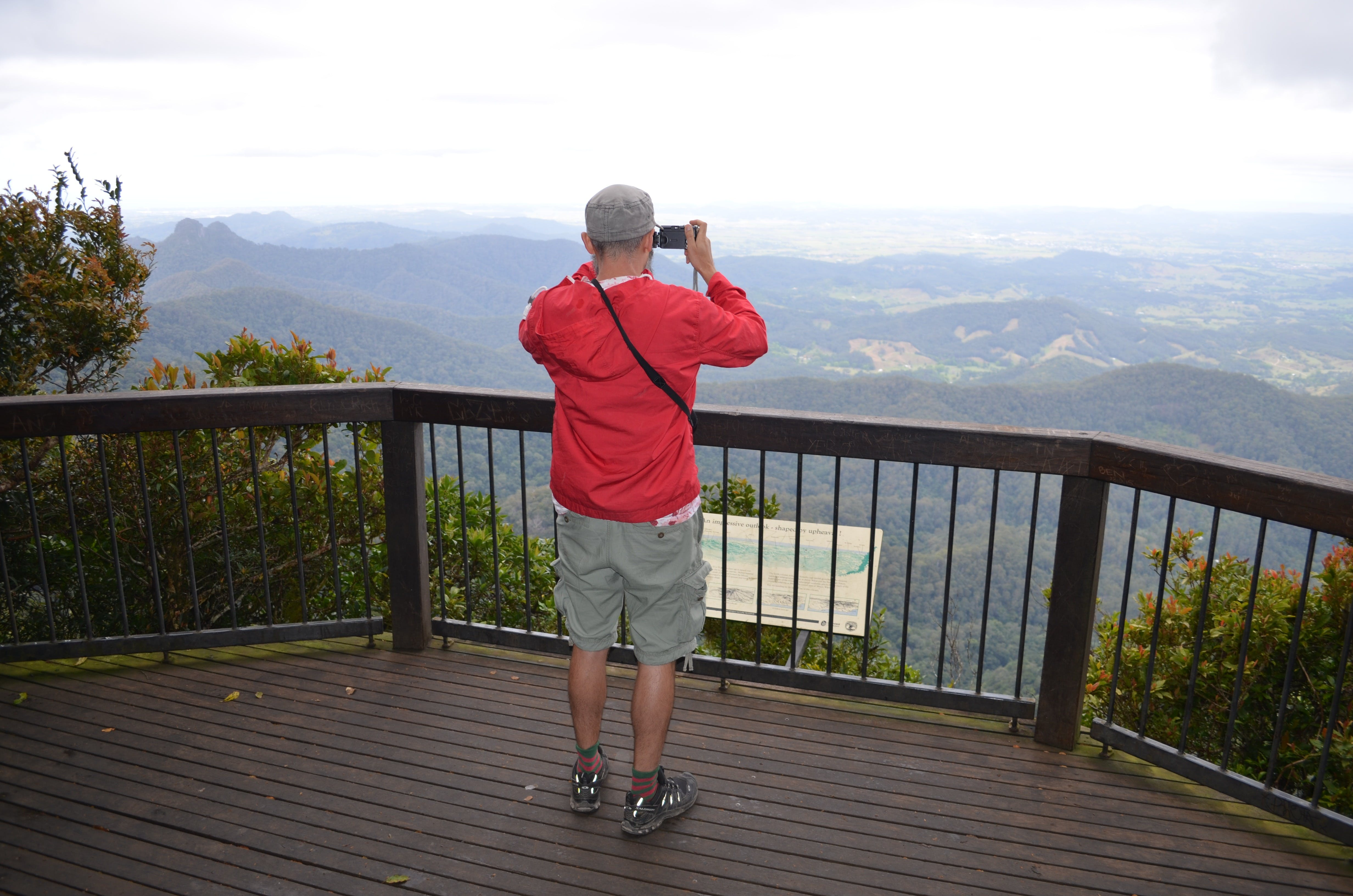 Best of All lookout track Springbrook National Park - Wagga Wagga Accommodation