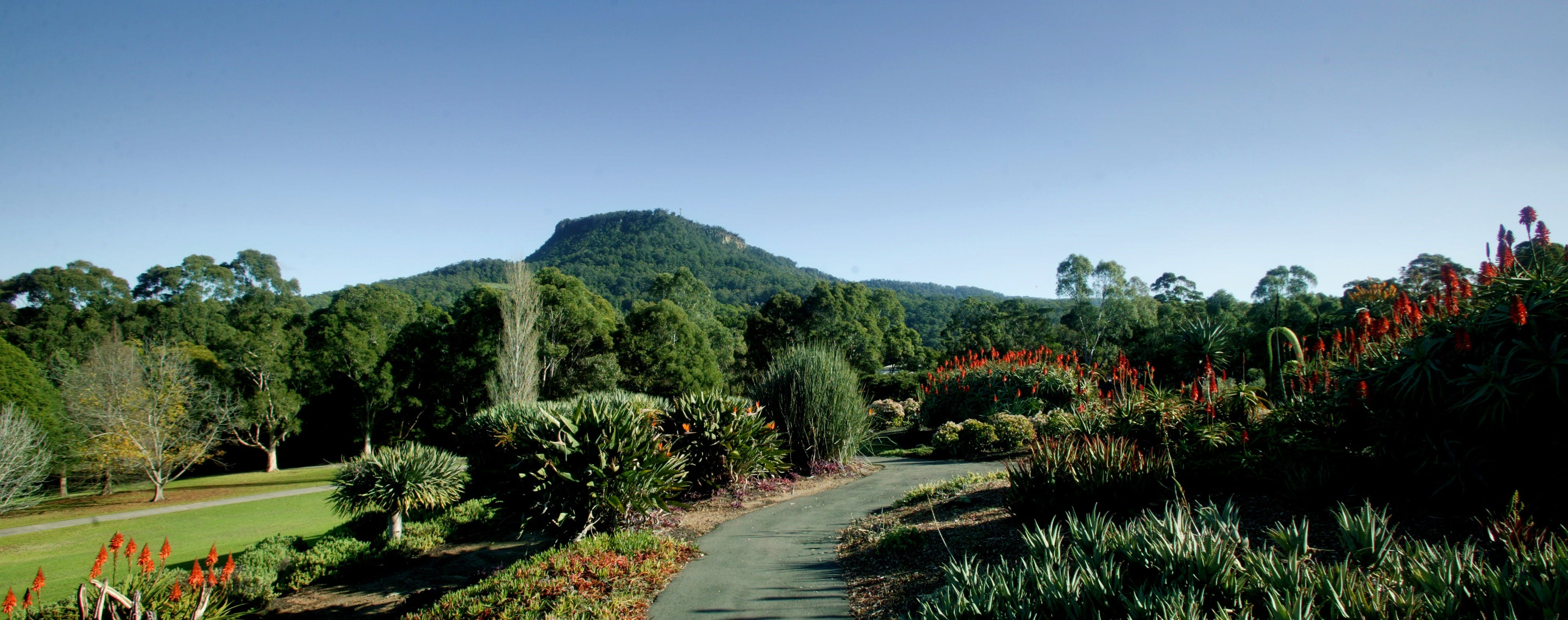 Botanic Garden Wollongong - Wagga Wagga Accommodation