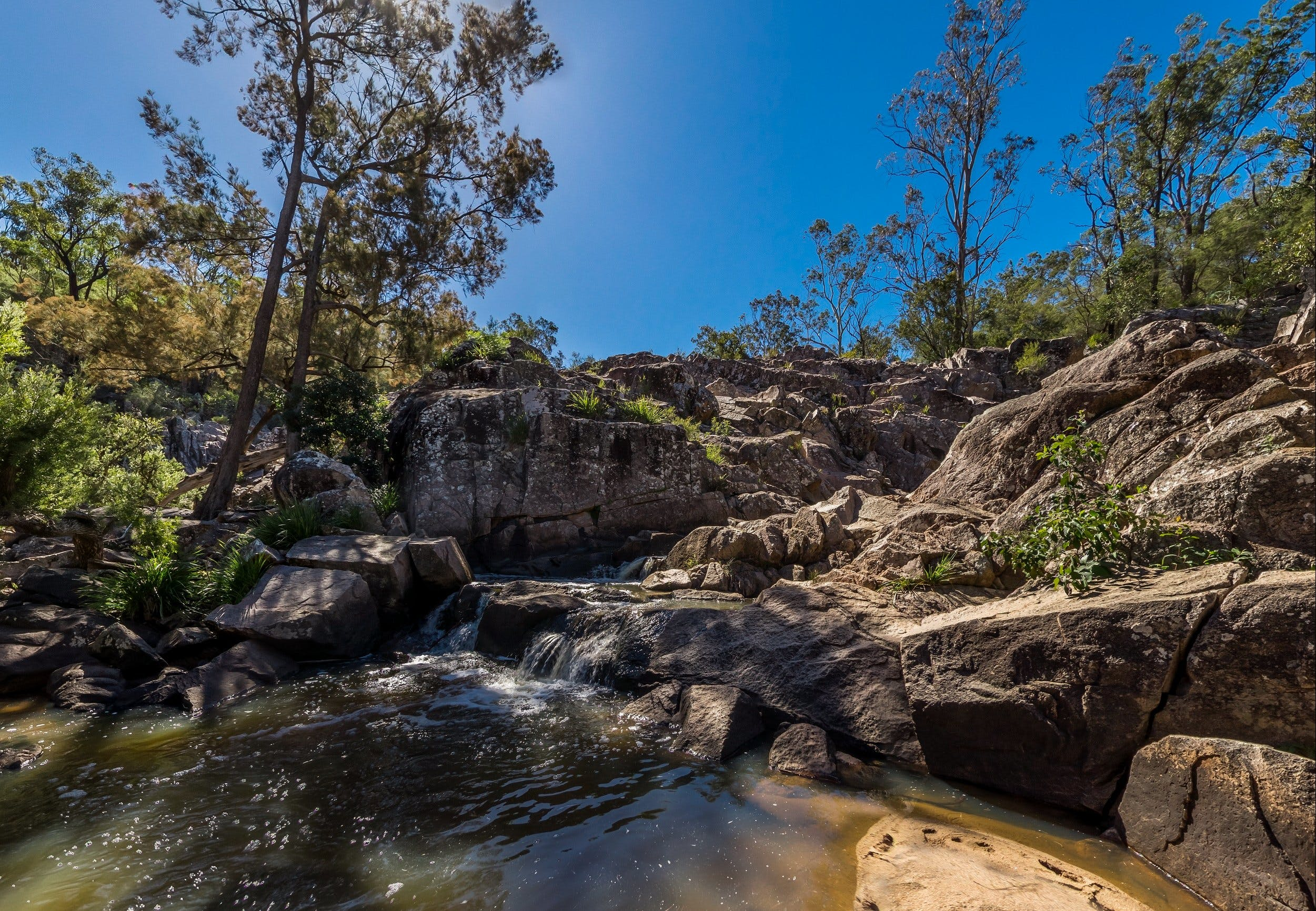 Crows Nest Falls - Wagga Wagga Accommodation