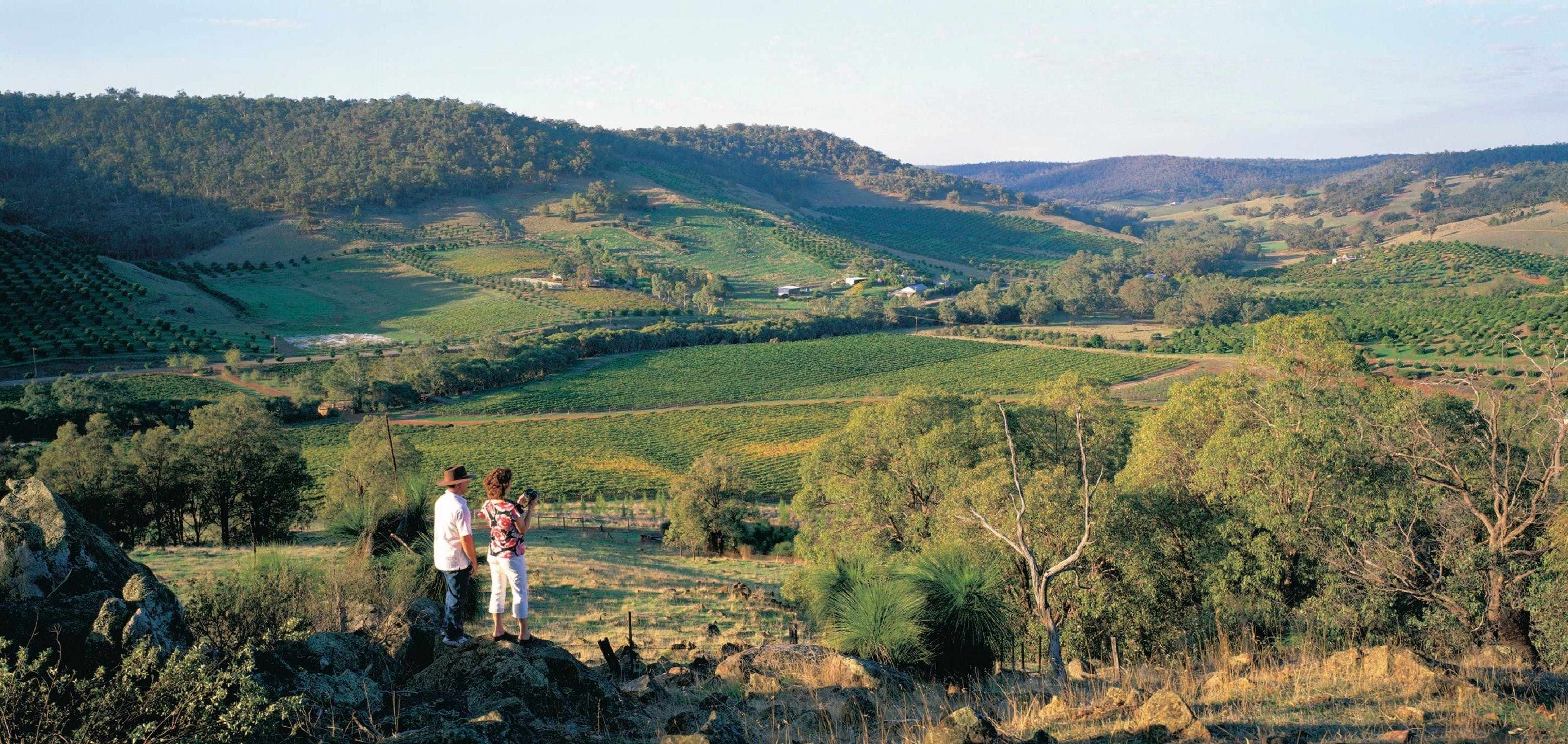 Farm Flavour Trail Chittering Valley - Wagga Wagga Accommodation