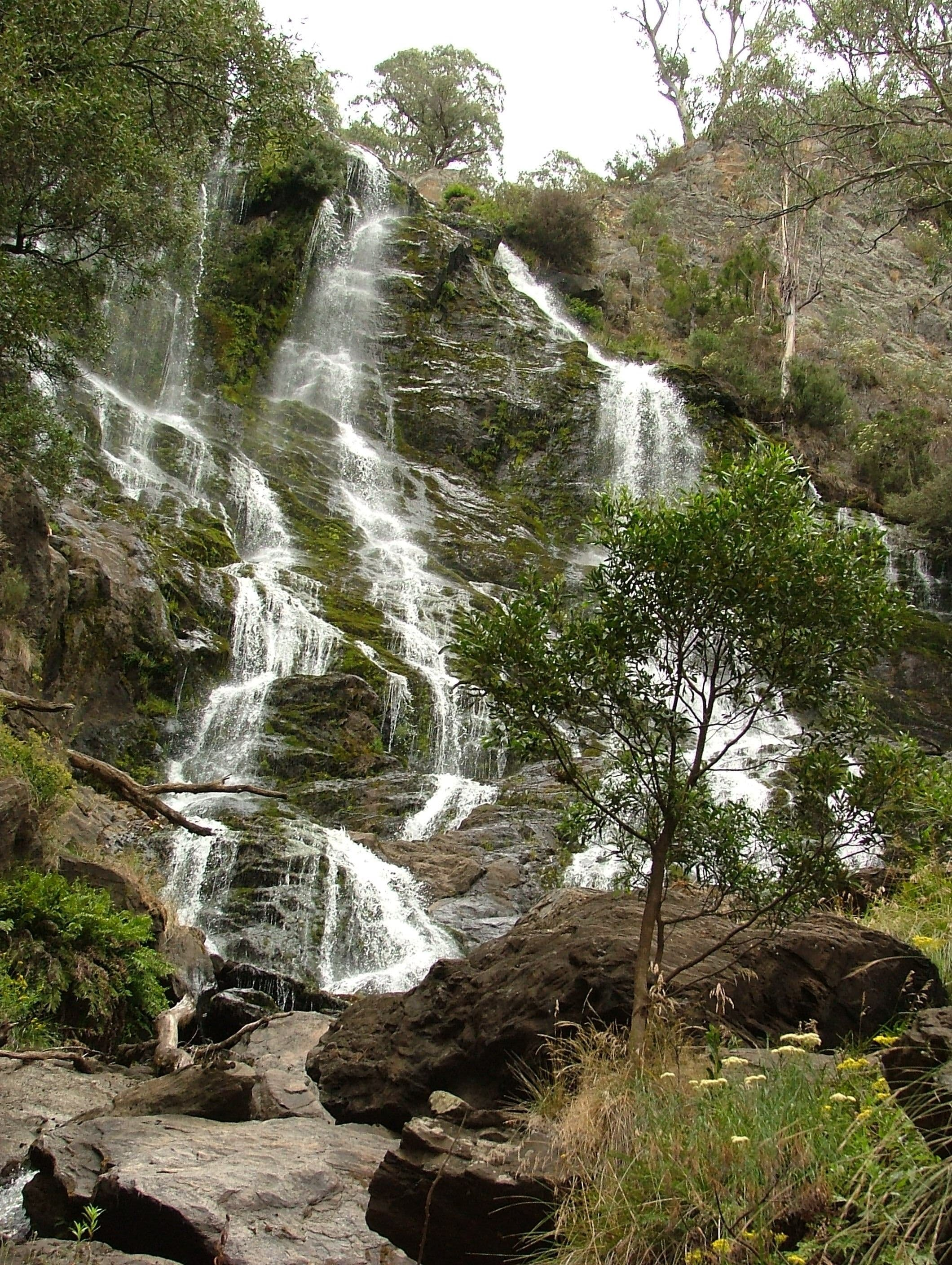 Buddong Falls Walking Track - Wagga Wagga Accommodation