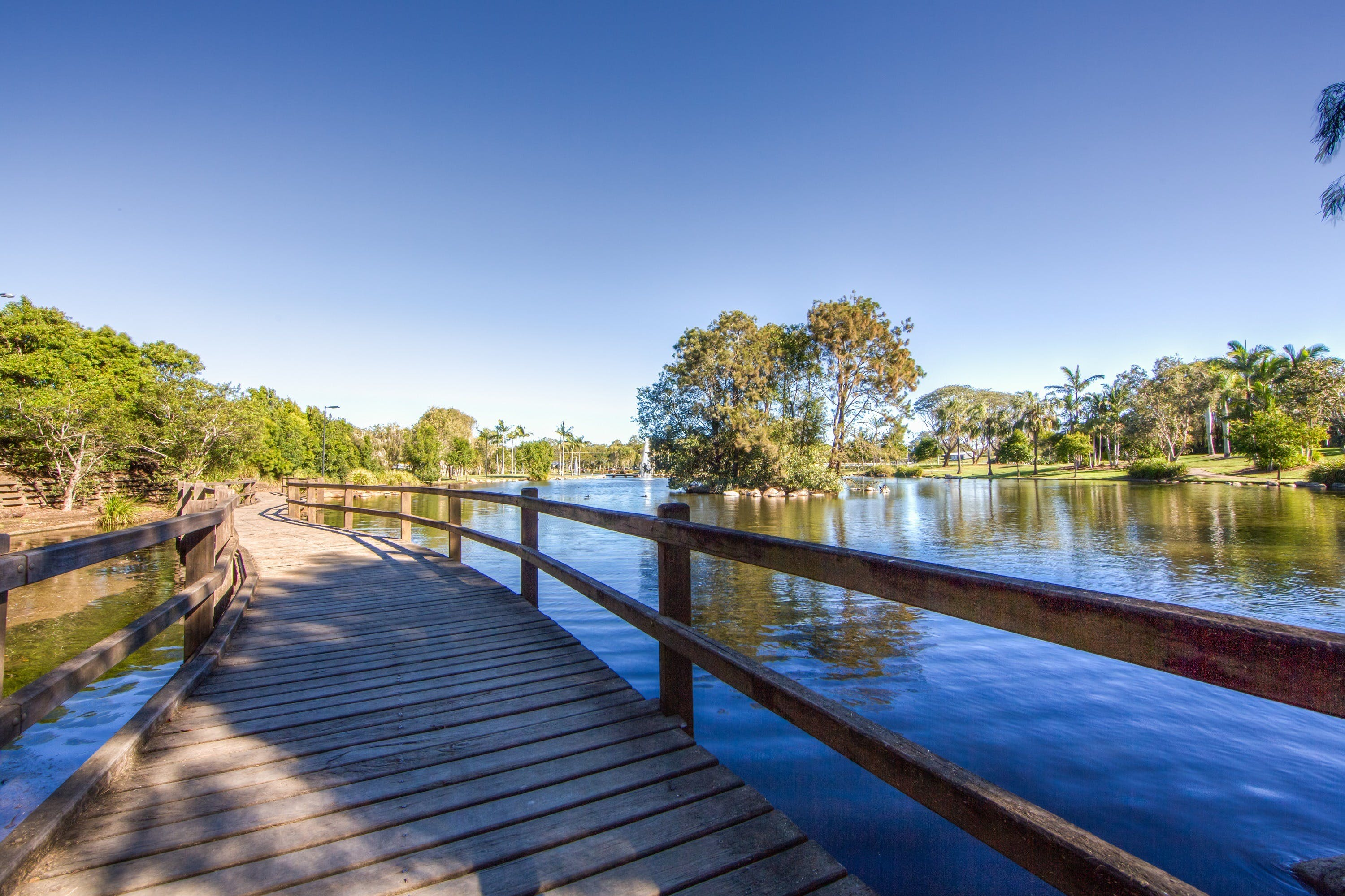 Centenary Lakes Park - Wagga Wagga Accommodation