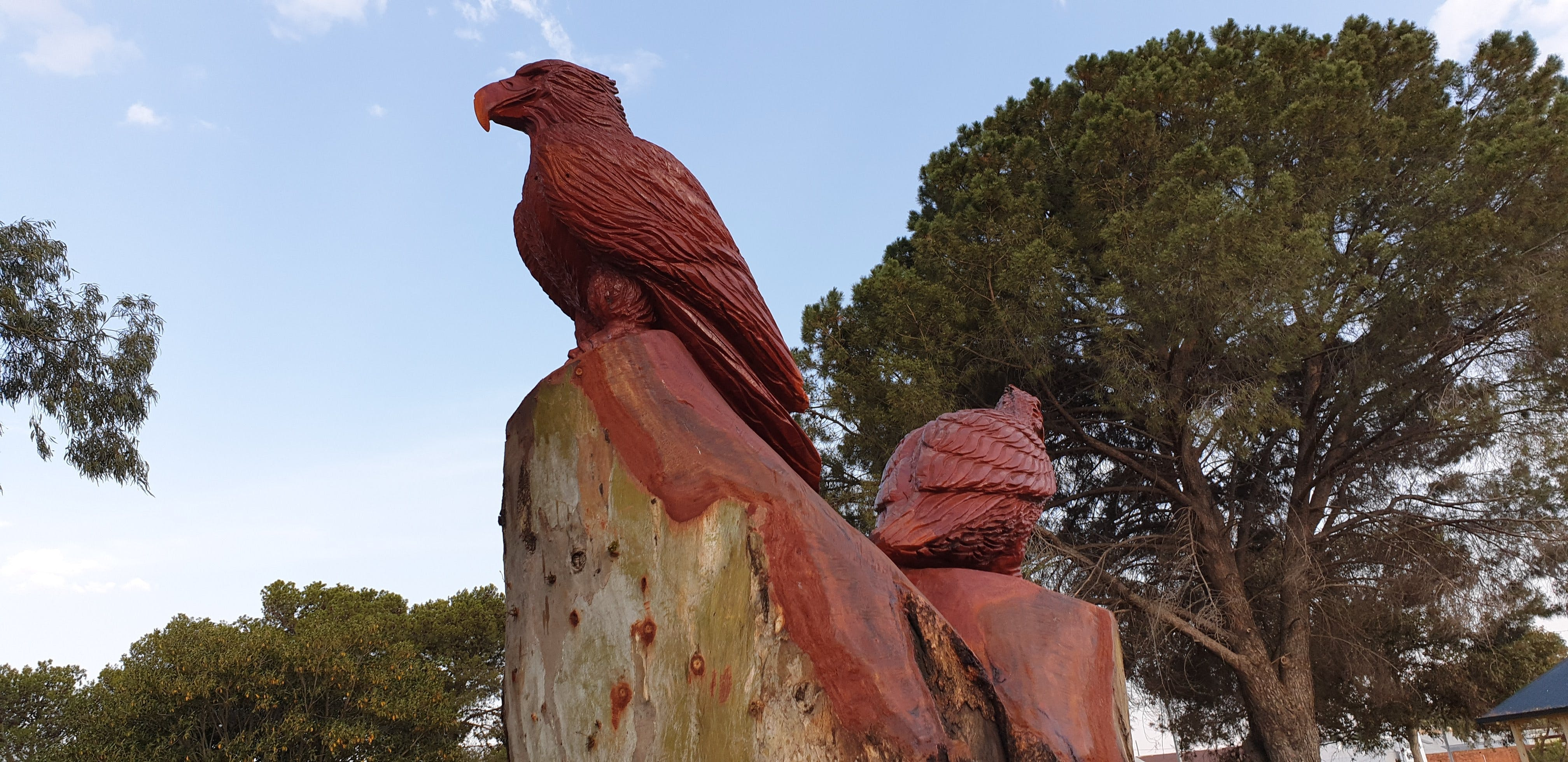 Chainsaw Tree Sculpture - Wagga Wagga Accommodation
