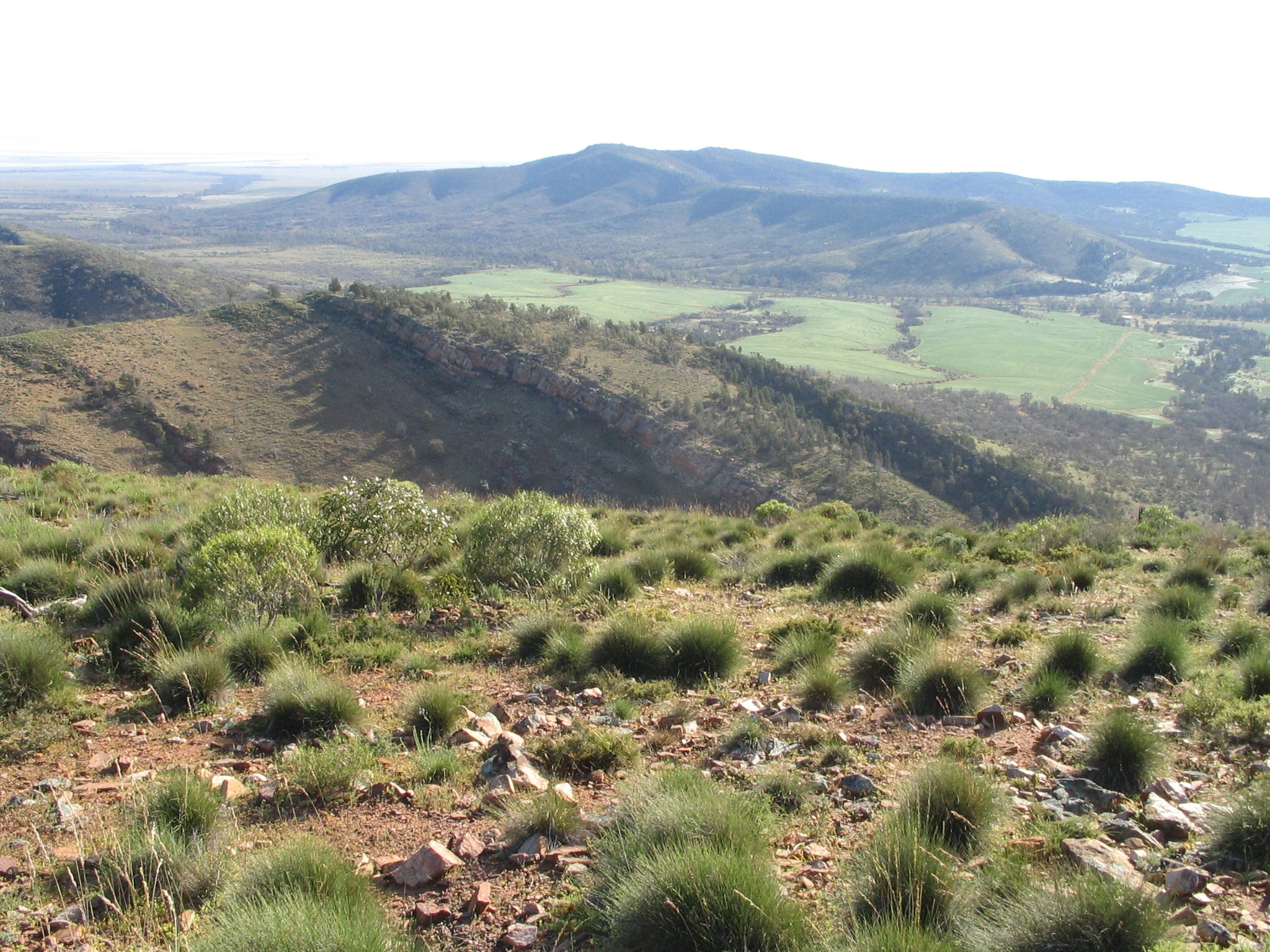 Horseshoe Rim 4WD Adventure Track - Wagga Wagga Accommodation