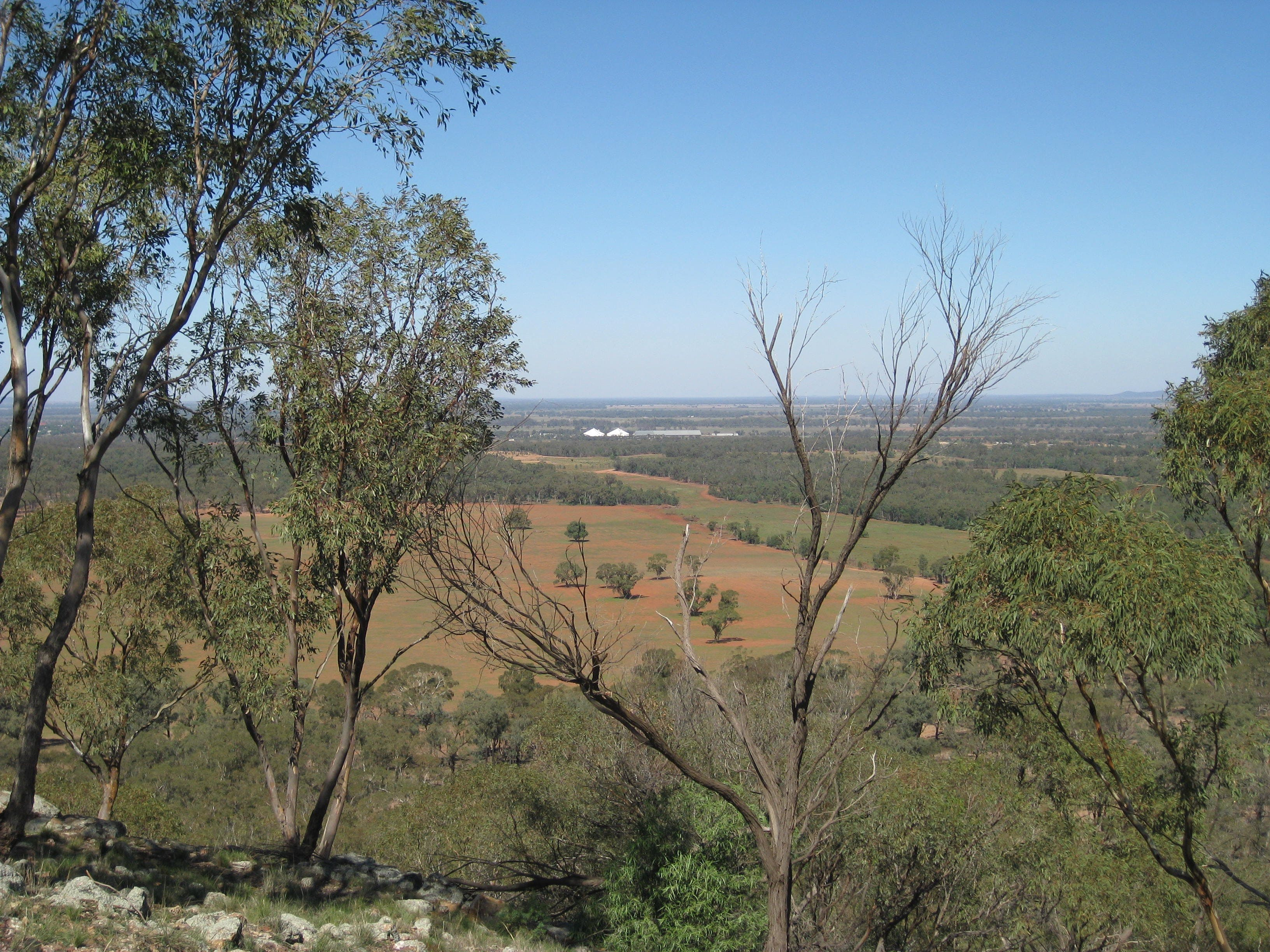 Mount Tilga - Wagga Wagga Accommodation