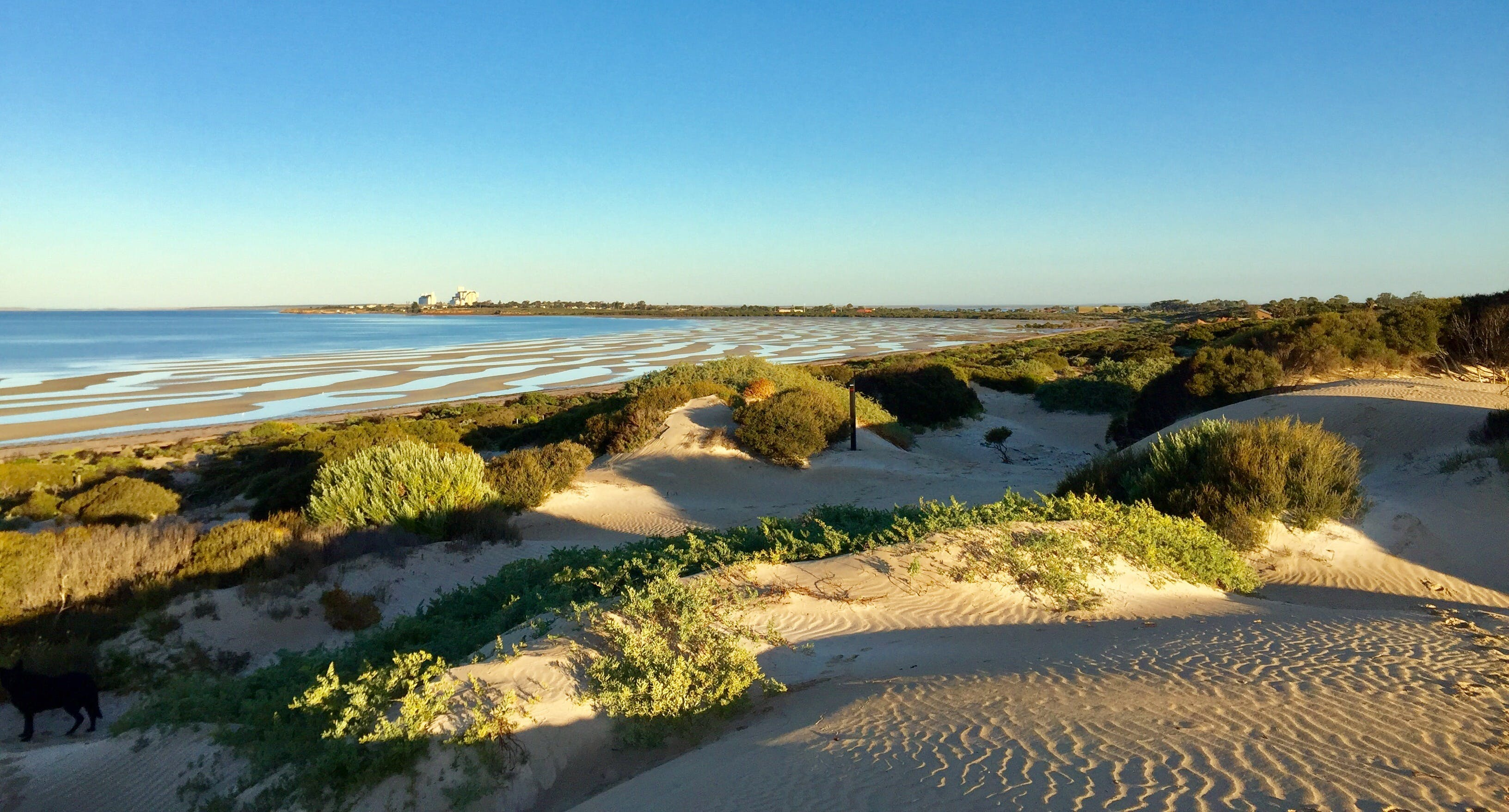 Shelly Beach Dune Walk Trail - Wagga Wagga Accommodation