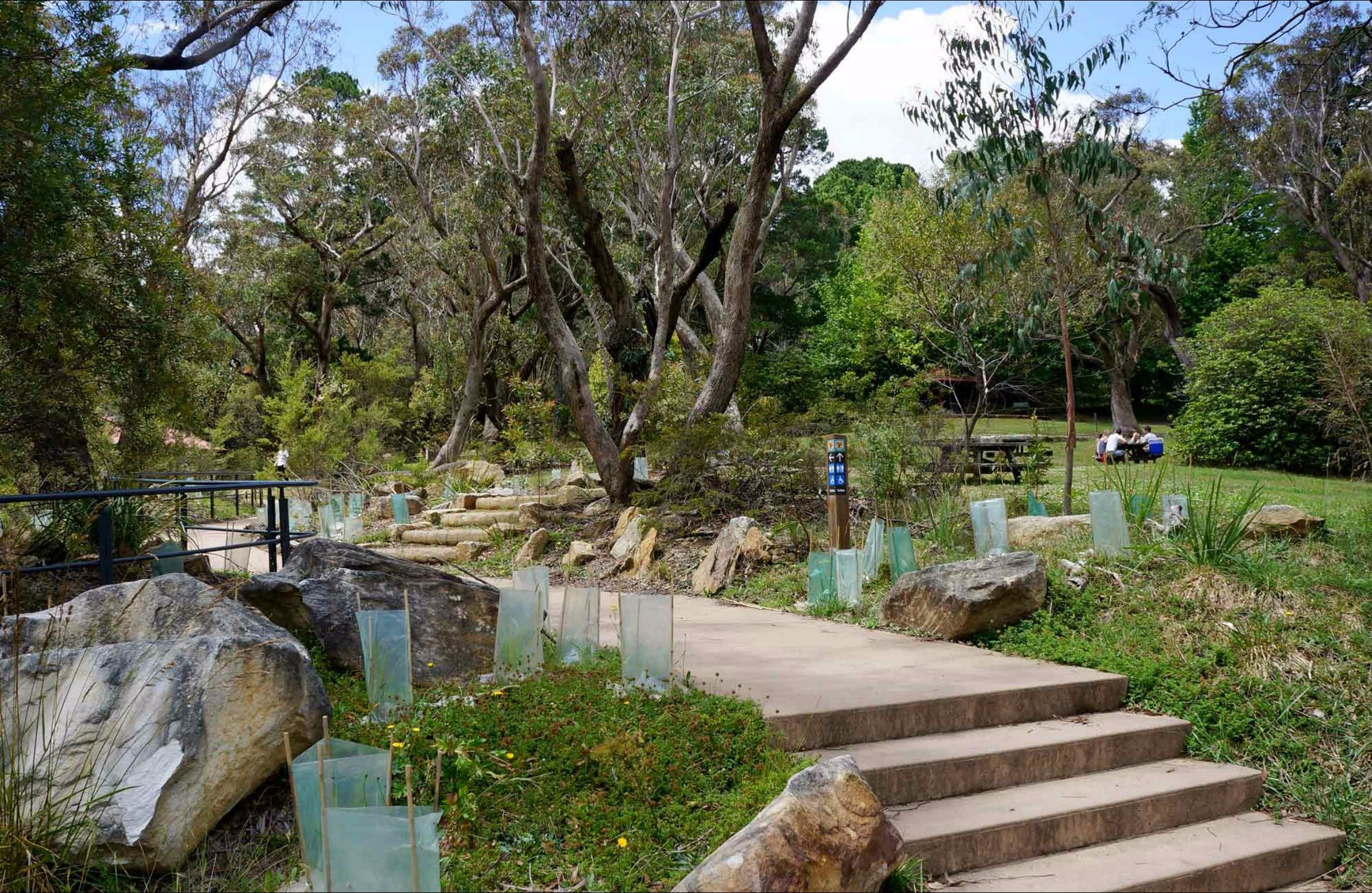 Wentworth Falls picnic area - Wagga Wagga Accommodation