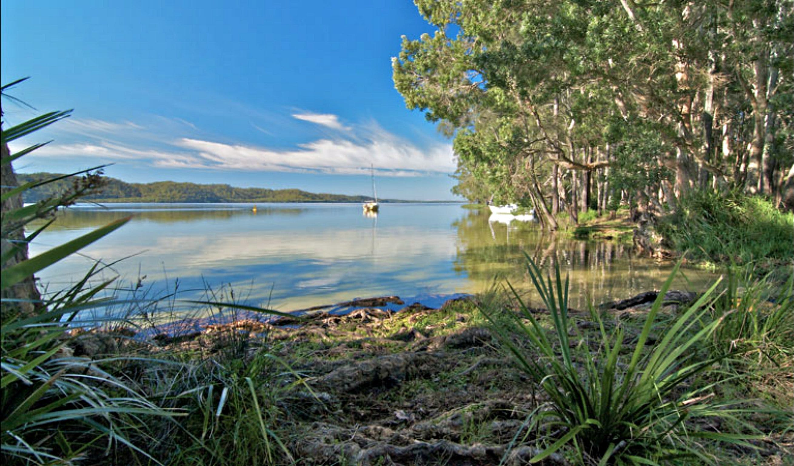 Black Oaks Picnic Area - Wagga Wagga Accommodation