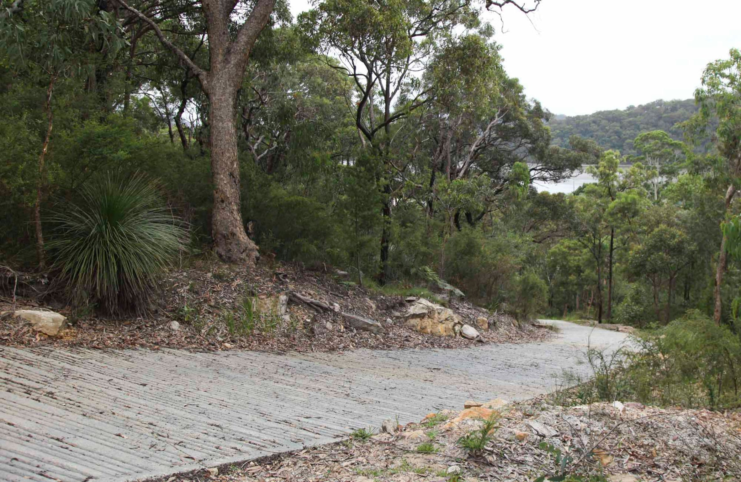 Great North Walk  Ku-ring-gai Chase National Park - Wagga Wagga Accommodation