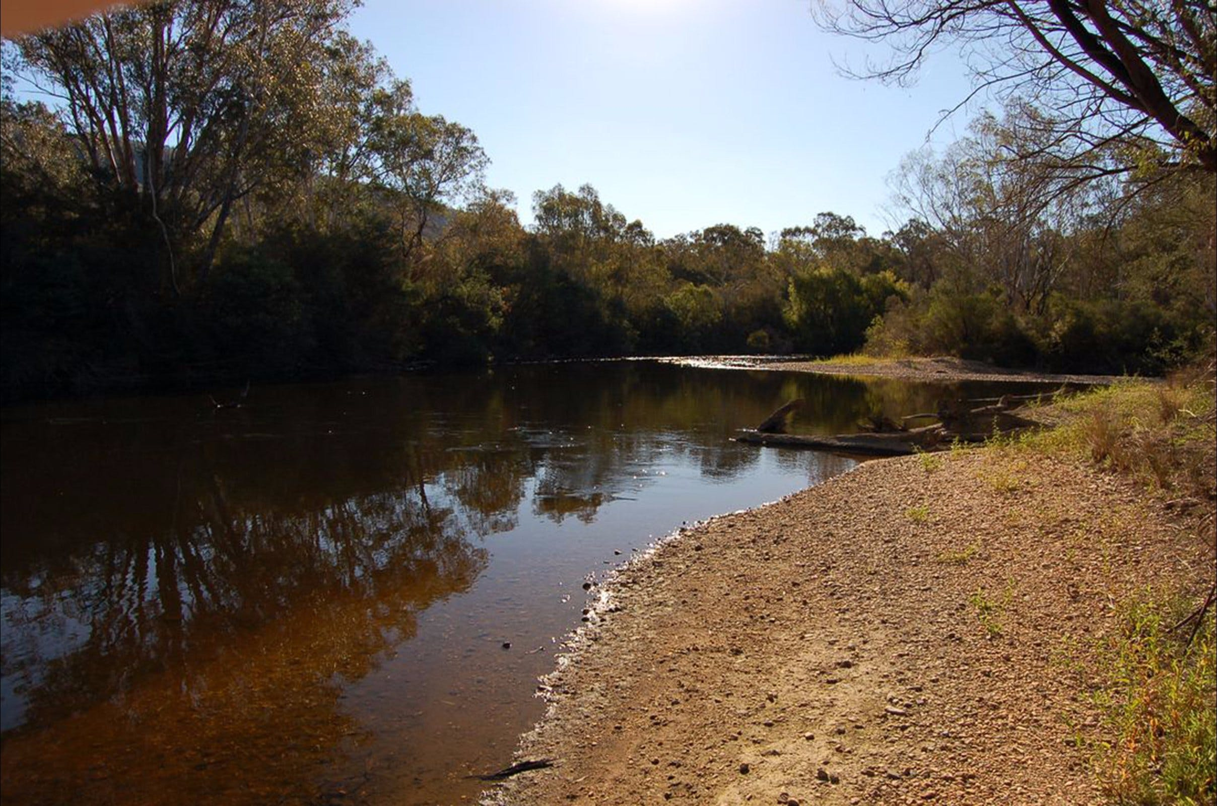 Horseshoe Lagoon Flora and Fauna Reserve - Wagga Wagga Accommodation