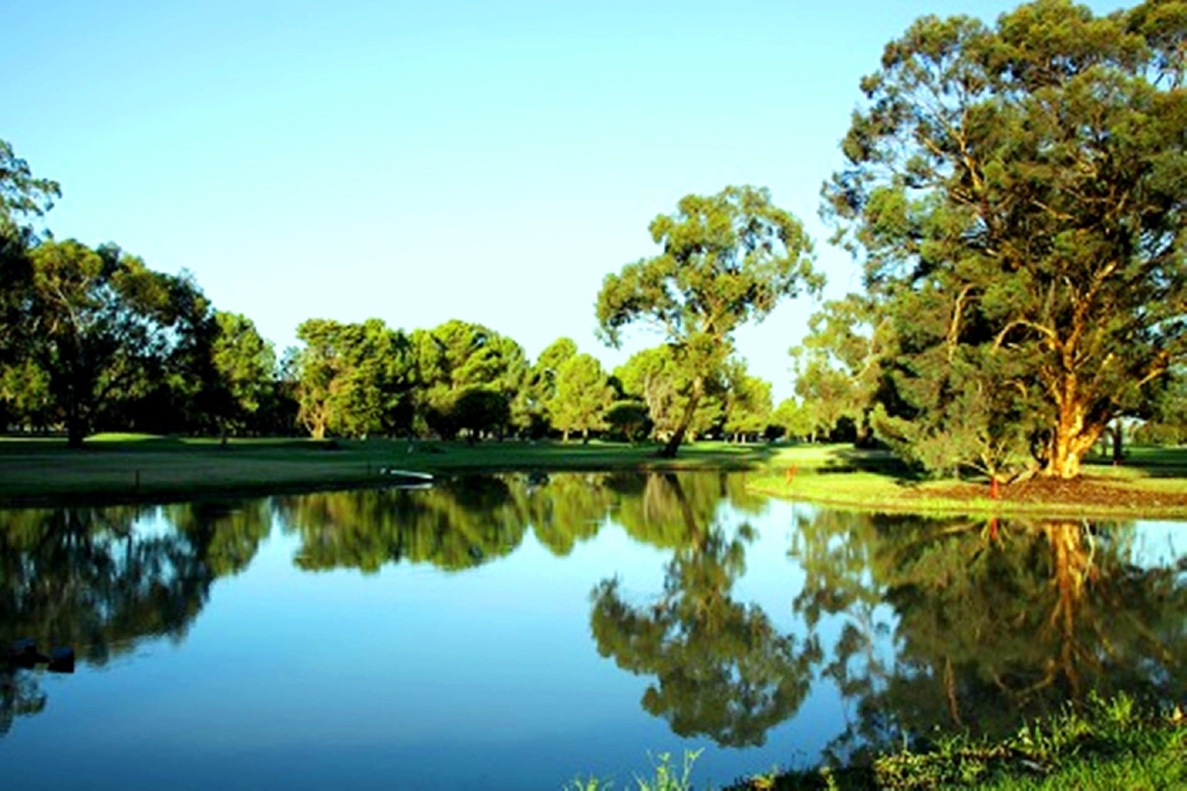 Finley Golf Club - Wagga Wagga Accommodation