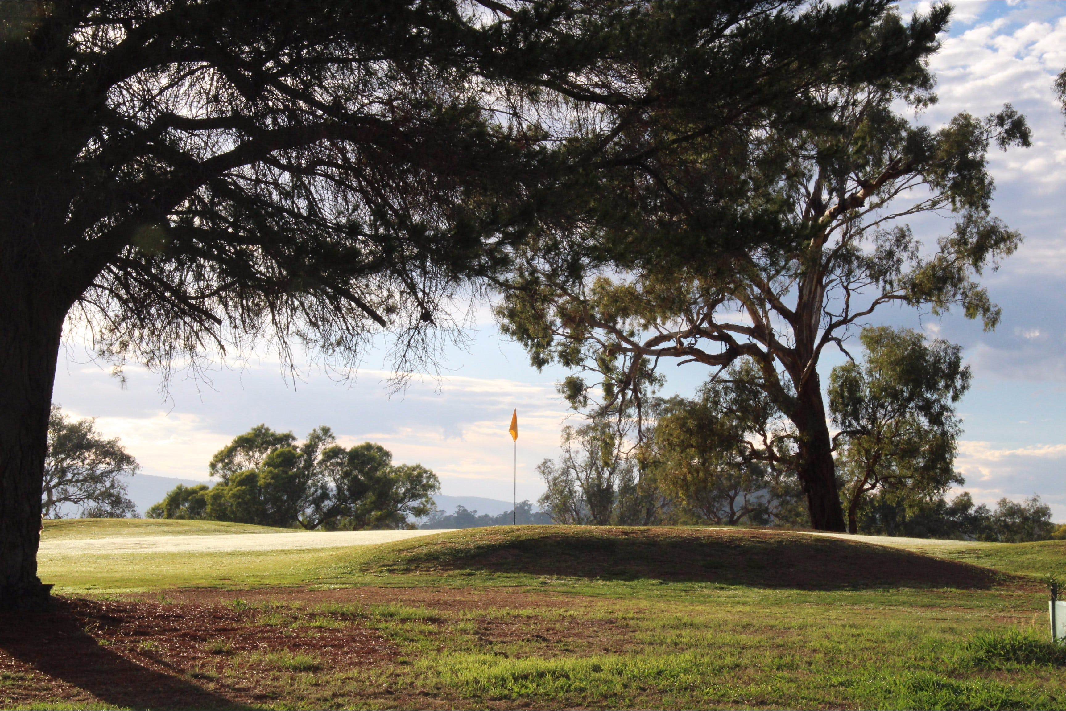 Yea Golf Club - Wagga Wagga Accommodation