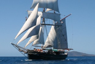 Australian Tallship Cruises - Wagga Wagga Accommodation